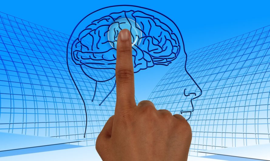 Методы тренировок мозга!